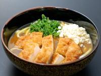 B_0812051_curryreto,wafudashitsuyu