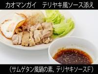 A_0310045_samugetan,teriyaki