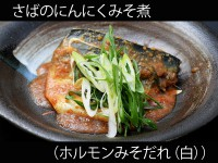 A_0429038_horumisoshiro