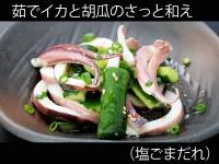 A_0516100_shiogomadare