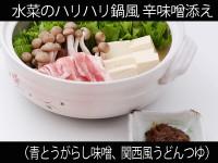 A_0531015_aotogarashi,kansaiudon
