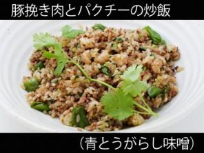 A_0531026_aotougarashi