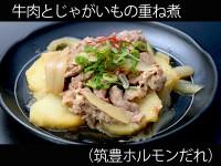A_0432012_chikuho