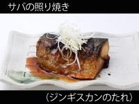 A_0433013_jingisukan