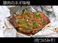 A_0110058_nikutsukemiso