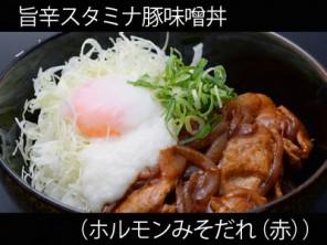 A_0428045_horumisoaka