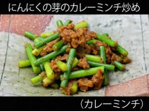 A_0920006_curryminchi2