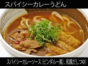 A_0820005_curryvindaloo,wafudashitsuyu