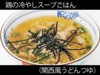 A_kansaiudon_054torinohiyashisu-pugohan