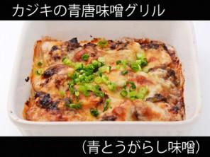 A_0531023_aotougarashi