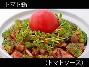 A_0819002_tomatosauce