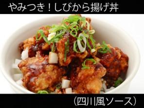 A_0625020_shisensauce