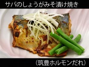 A_0432038_chikuho